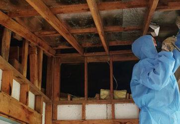 Asbestos Ceilling Removal